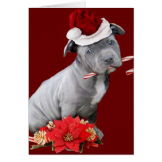 christmas_pitbull_puppy_card-r61b6de79367b48f58a0d294ba49b9a5c_xvuat_8byvr_324